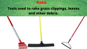 essential tools for gardening